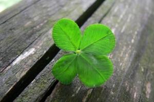 bijgeloof geluk symbool gokken.info